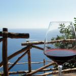 Mediterrano, sol y vino